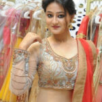 Nilofer Haidry Beautiful and Hot Sweet South Actress in Transparent Saree 16